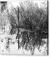 Zen Pond Acrylic Print