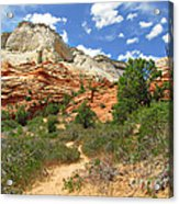 Zion National Park - A Picturesque Wonderland Acrylic Print by Christine Till