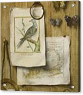A Trompe L'oeil With Magnifying Glass Acrylic Print