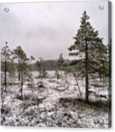 April Snow 1 Acrylic Print