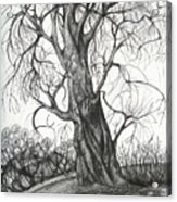 Autumn Dancing Tree Acrylic Print