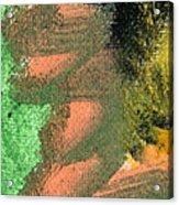 Circmo Acrylic Print