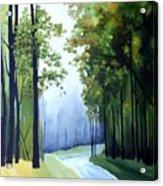 Country Road Acrylic Print by Carola Ann-Margret Forsberg