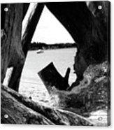 Drift Wood Window Acrylic Print