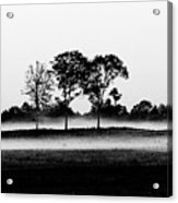 Evening Mist Black And White Acrylic Print