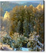 First Snow And Bosque Glow Acrylic Print