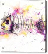 Fish Bones Acrylic Print
