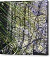 Grass And Stone  Acrylic Print