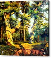 Green Summer-the Oak Forest Acrylic Print