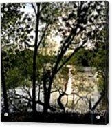 In The Shadows  - No. 430 Acrylic Print