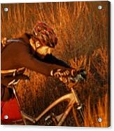 Mountain Bike Acrylic Print