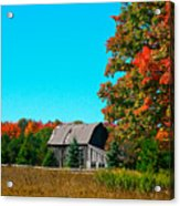 Old Barn In Fall Color Acrylic Print