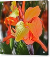 Orange Bright Acrylic Print by Maureen J Haldeman
