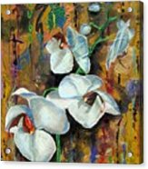 Orchid Yo Acrylic Print