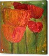 Poppies 2 Acrylic Print