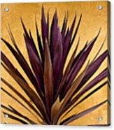 Purple Giant Dracaena Santa Fe Acrylic Print