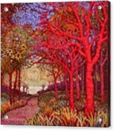 Red Trees Acrylic Print