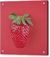 Strawberry In Red I Acrylic Print