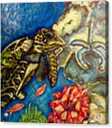 Sweet Mystery Of The Sea A Hawksbill Sea Turtle Coasting In The Coral Reefs Original Acrylic Print