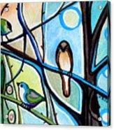 Three Birds Acrylic Print
