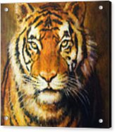Tiger Head, Color Oil Painting On Canvas. Acrylic Print