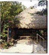 Tiki Hut  Acrylic Print