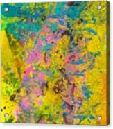 Tinge Of Pink Acrylic Print