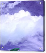 Tree Clouds Hill Acrylic Print