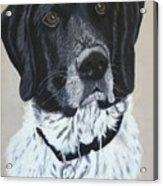 Tucker Acrylic Print