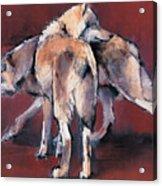 Wolf Composition Acrylic Print