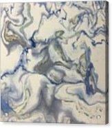 01032017c Acrylic Print by Sonya Wilson