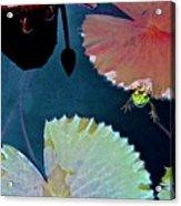 01142017102 Acrylic Print