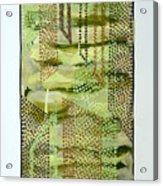 01328 Slide Acrylic Print