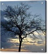 016 April Sunsets Acrylic Print