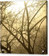 02 Foggy Sunday Sunrise Acrylic Print