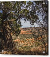 030715 Palo Duro Canyon 092 Acrylic Print