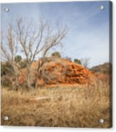 030715 Palo Duro Canyon 160 Acrylic Print