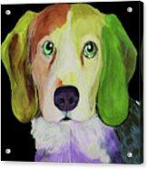 0356 Dog By Nixo Acrylic Print