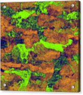 0374 Abstract Thought Acrylic Print