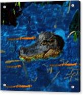 04142015 Gator Hole Acrylic Print