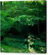042407-45 Acrylic Print