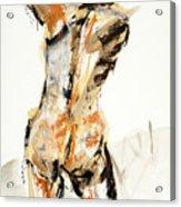 04935 Swinger Acrylic Print