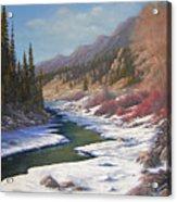 060328-2822    Remnants Of Winter   Acrylic Print