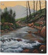 090430-1216   Trout Creek - Spring Acrylic Print