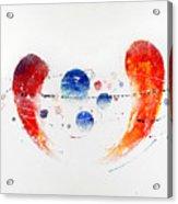 090825 Acrylic Print