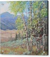 090925-68   The Peak Of Summer Acrylic Print