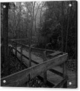091809-7 Acrylic Print