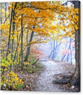 0982 Starved Rock Riverwalk Acrylic Print