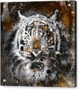 Tiger Collage On Color Abstract  Background  Rust Structure Wildlife Animals Acrylic Print