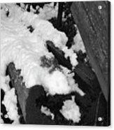 Snowy Wood  Acrylic Print
